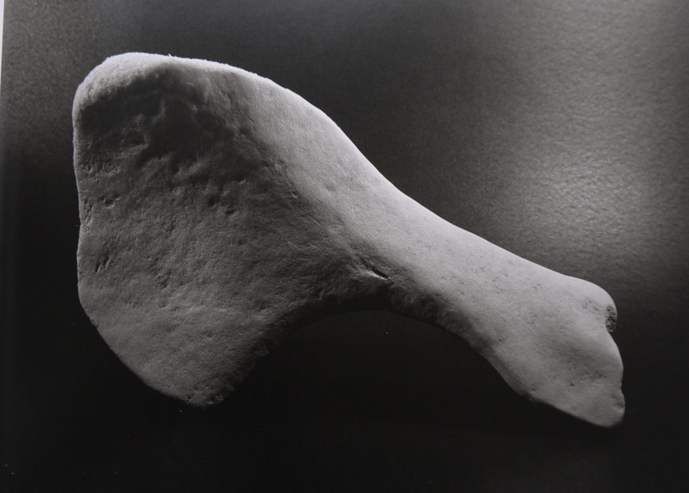 Os, 1933