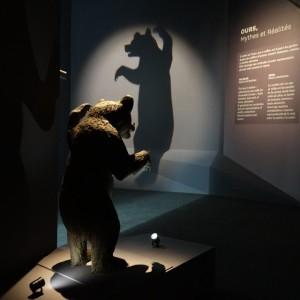 Museum de Toulouse - #museumT