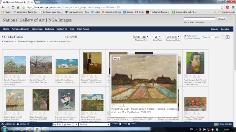 Impression d'écran depuis la collection du National Gallery of Art en ligne - Ici choix thématique «Intimate Impressions. Vincent Van Gogh, Flower Beds in Holland