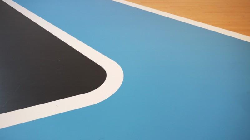 Jean-Baptiste Sauvage, Blue line #2, 2014. Vue de l'exposition Motopoétique au Musée d'Art Contemporain de Lyon, peinture in situ, reprise échelle 1 d'un morceau d'îlot du circuit Paul Ricard.