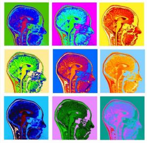 Andy Warhol for Neuroscientists by Valerie van Mulukom