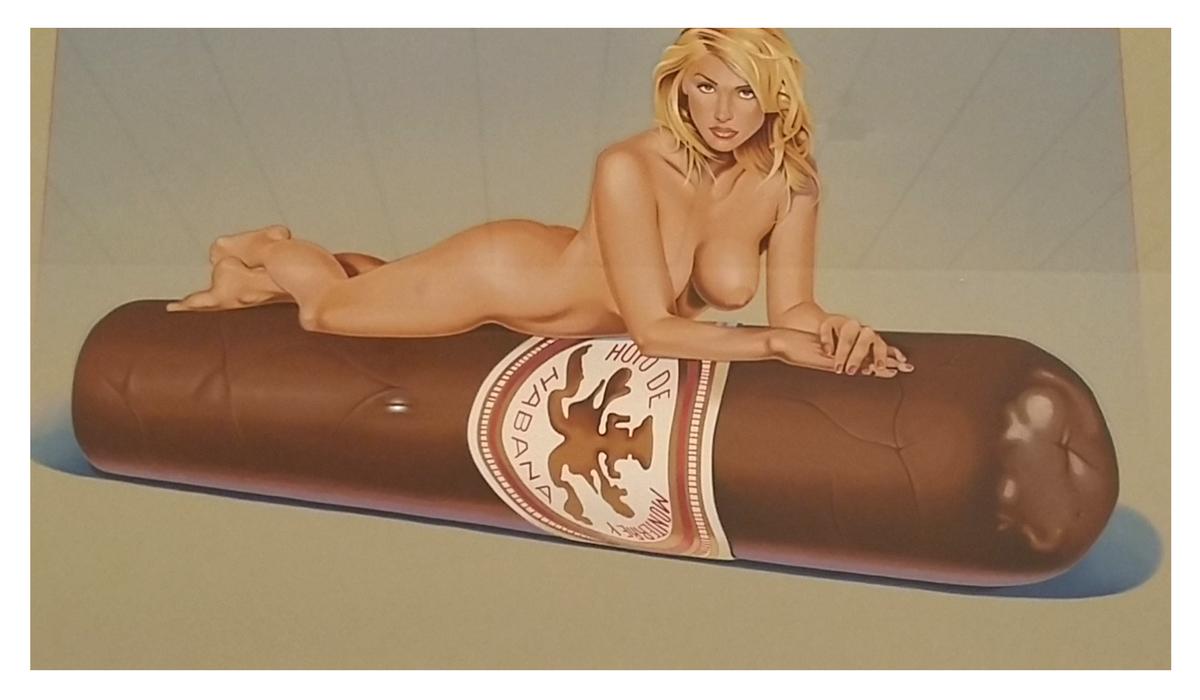 Oeuvre de Mel Ramos, exposition Le Bonheur de Deviner Peu à Peu au MAC Lyon. Le MAC Lyon a acquis 55 oeuvres de l'artiste dédiées à la figure féminine