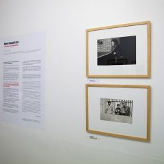 Catherine Dérioz – Galerie Le Réverbère – « Nous sommes réputés pour être une galerie qui aime accrocher »