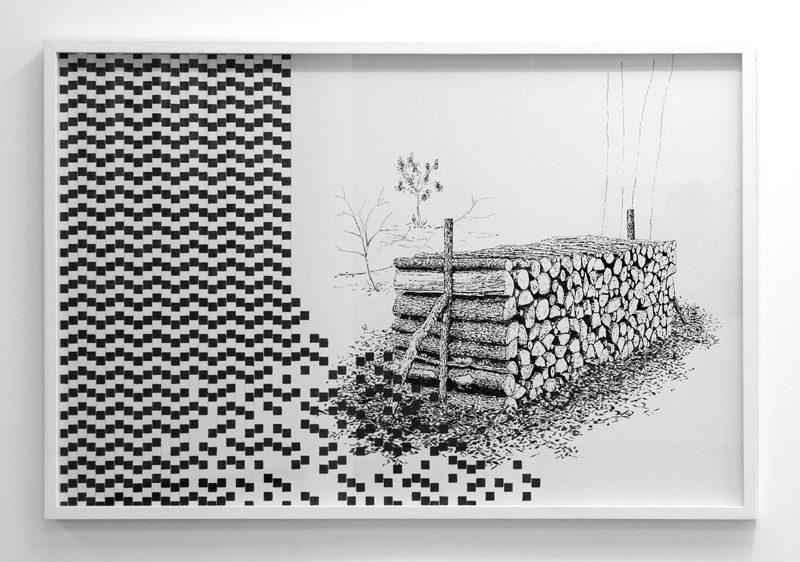 Pierre Malphettes, Les forêts optiques ≠1, 2014.