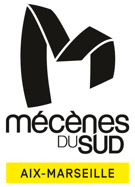 Logo de l'Association Mécènes du Sud