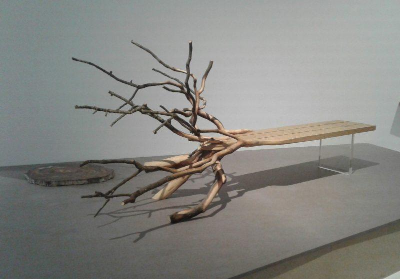 Benjamin Graindorge, Fallen tree, 2011.