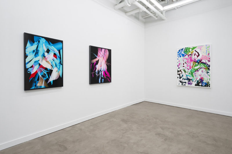 Jessica Labatte, exposition monographique, Galerie Western Exhibitions, Chicago, IL, 2015, vue de l'installation. Série Underwater Highway.