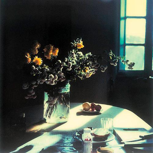 Andrei Tarkovski, photo polaroid