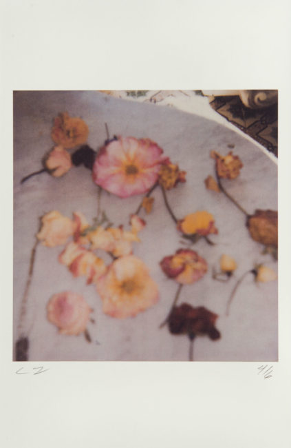 Cy Twombly, Light Flowers, Gaeta, 2008