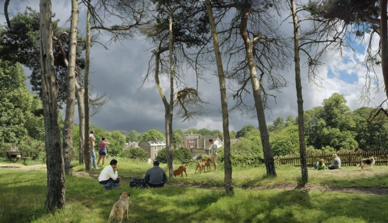 View of Vale of Health, Looking Towards Hampstead, 2007, série Hampstead