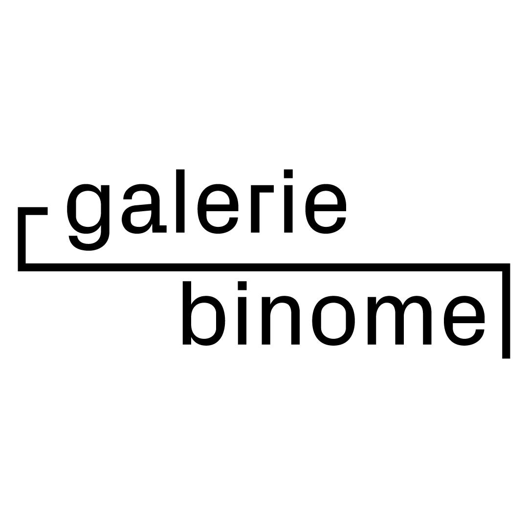Galerie Binome, Paris